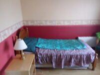 Large furnished room to let