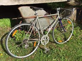 Giant Pentolon 7400 Sports Series Road Bike