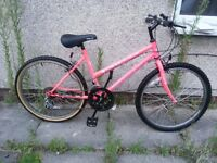 Apollo Pink Girls bike