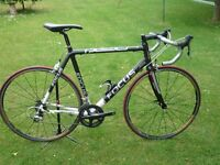 FOCUS CAYO CARBON ROAD BIKE - LIGHT WEIGHT AND ULTEGRA GEARS - EXCELLENT