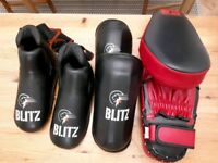 Boxing pads (shin, feet, training)