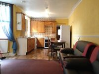 2 bedroom flat with garden in Turnpike Lane N8