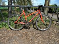 """Ladies Mountain Bike For Sale. Fully Serviced, Ready To Ride. & Guaranteed. 18"""" Frame. 10 Speed"""