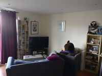 Nice Room with own bathroom and massive shared living room - available now