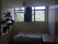 Single room in Bournemouth town centre