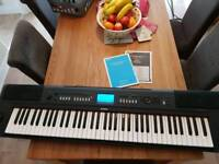 Piaggero weighted keyboard