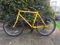 """Apollo Kaos Mountain Bike 21"""" Frame"""