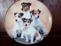 Mandie Haywood plate