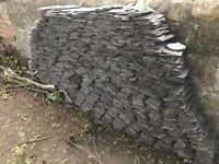 Approximately 100 m2 of roof slates