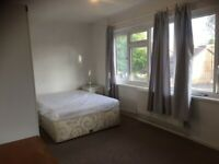 Beautifully Double Room to Rent in Crown Road Sutton