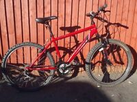 "Apollo Feud Mountain Bike - 17"" Frame/Front Susp Bike/V-Brakes/Good Condition/FullyServiced/Warranty"
