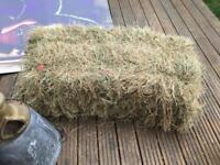 4 x Hay Bales Animal Feed