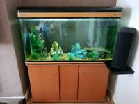 BOYU 4FT 300L FISH TANK WITH CABINET