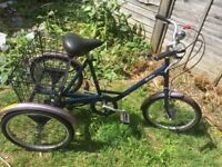 PASHLEY UNISEX TRICYCLE 3 WHEEL BICYCLE IN GREAT CONDITION