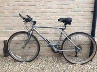 Timberline GT Mountain Bike 21 inch frame