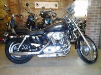 IMMACULATE 2006 (55 PLATE) HARLEY DAVIDSON XL1200C SPORTSTER VERY LOW MILEAGE STAGE 1 TUNED