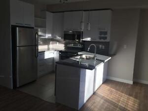 Brand New 2 bedroom condo close to Whyte Ave and U of A Edmonton Edmonton Area image 12