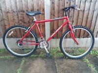 Mens mountain bike raleigh firefly 26 inch wheels 15 speed