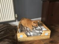 Cat Bed made from 100% reclaimed timber.