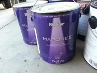 Paint (indoor/outdoor) + Deck Restore