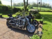 Harley Davidson V Rod 2008