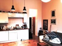 Very nice, 1 bedroom apartment with lovely high ceilings and a little garden