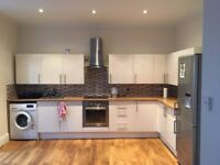 Rooms to rent in clean, spacious and renovated house.