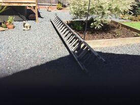 Treble ladders