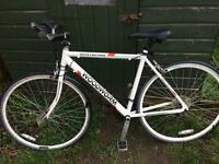 Woodworm racer bike