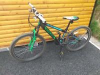 Kid's Green/Black/White Mountain Bike