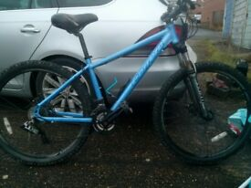 "carerra 16"" mountain bike"