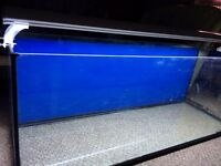 5ft fish tank with light filter