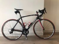 Specialized Tarmac SL2 full carbon body road bike