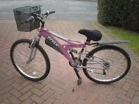 Ladies bicycle for sale .