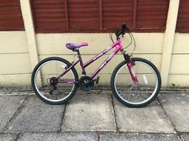 Purple mountain bike front suspension