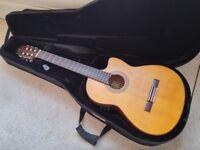Classical Guitar Case, Warwick Rockcase