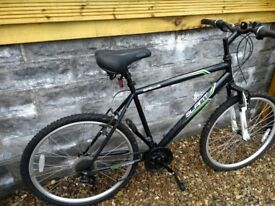 Mountain Bike -10 Speed