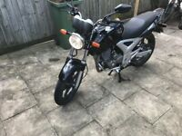 Honda CBF 250 Black 2008 !!! Low Milleage !!!