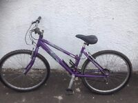 One of Many Great BIkes for UNI, College, Work or Play..Raleigh Vixen women's mountain bike