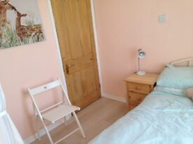 Lovely double room in comfortable house