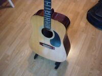 Ozark accoustic, gig, strap and tuner
