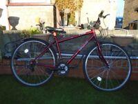 TRAX Hybrid Bike.