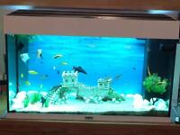 Fish tank with fish Open to offers