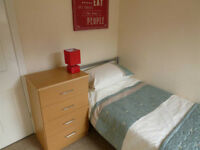 CAPTIVITING SINGLE ROOM AVAILABLE!!!
