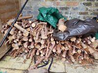 Free Fire wood -
