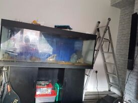 Tropical fish tank 5ft long 2ft deep 1 and half ft across (approx )