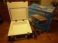 Suitcase fridge 4Litre