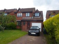 NO FEES !!! Beautiful 3 Bedroom House to rent in Birtley