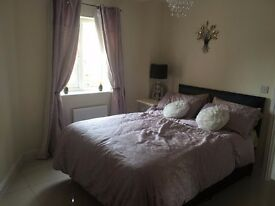 Double Room Rent berry-field Aylesbury