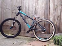 NS Bikes Holy 1 Jump Bike rear wheel problem / hubs /